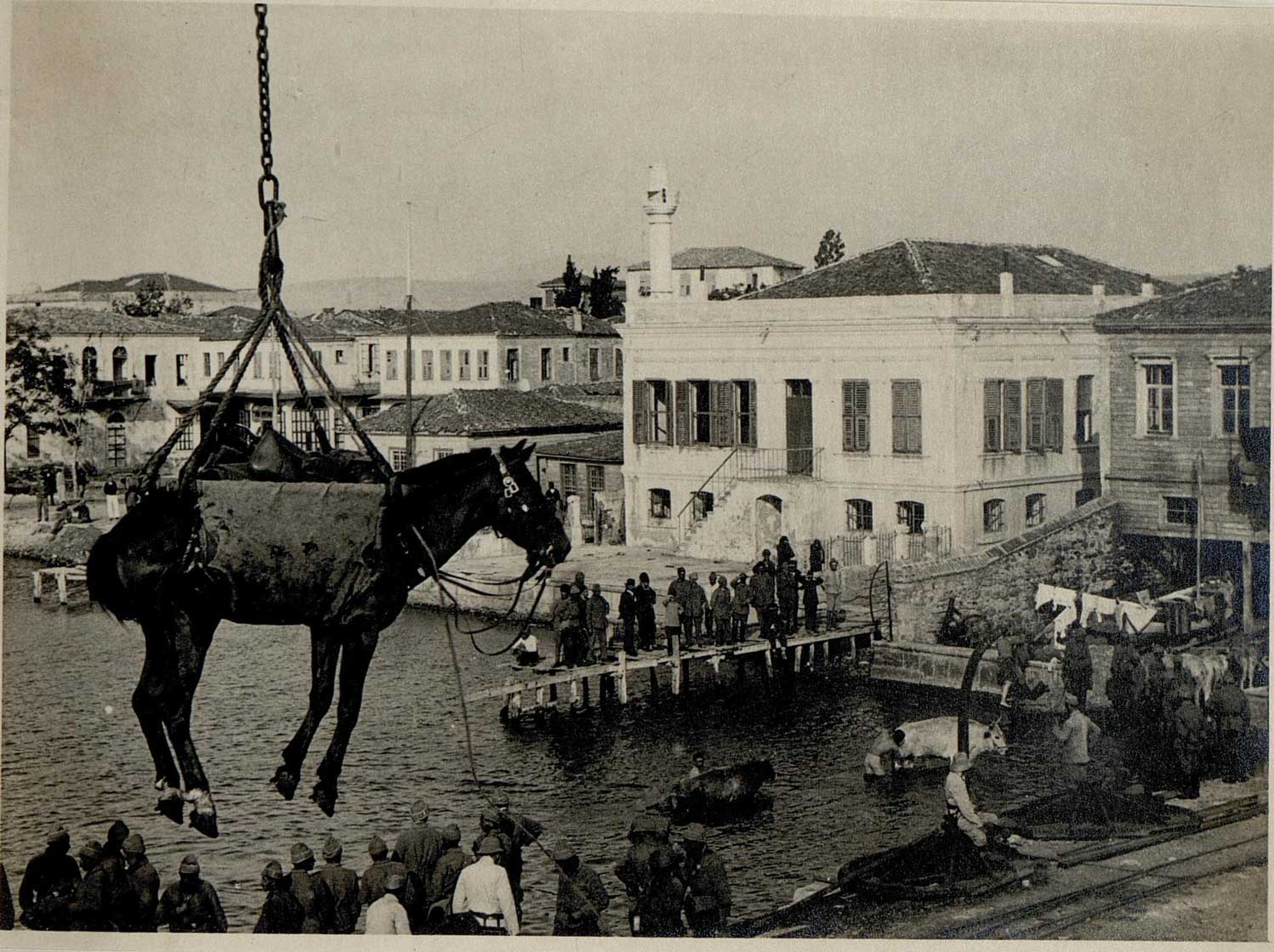 Unloading a horse at the Turkish port of Canakkale, during the Dardanelles campaign.