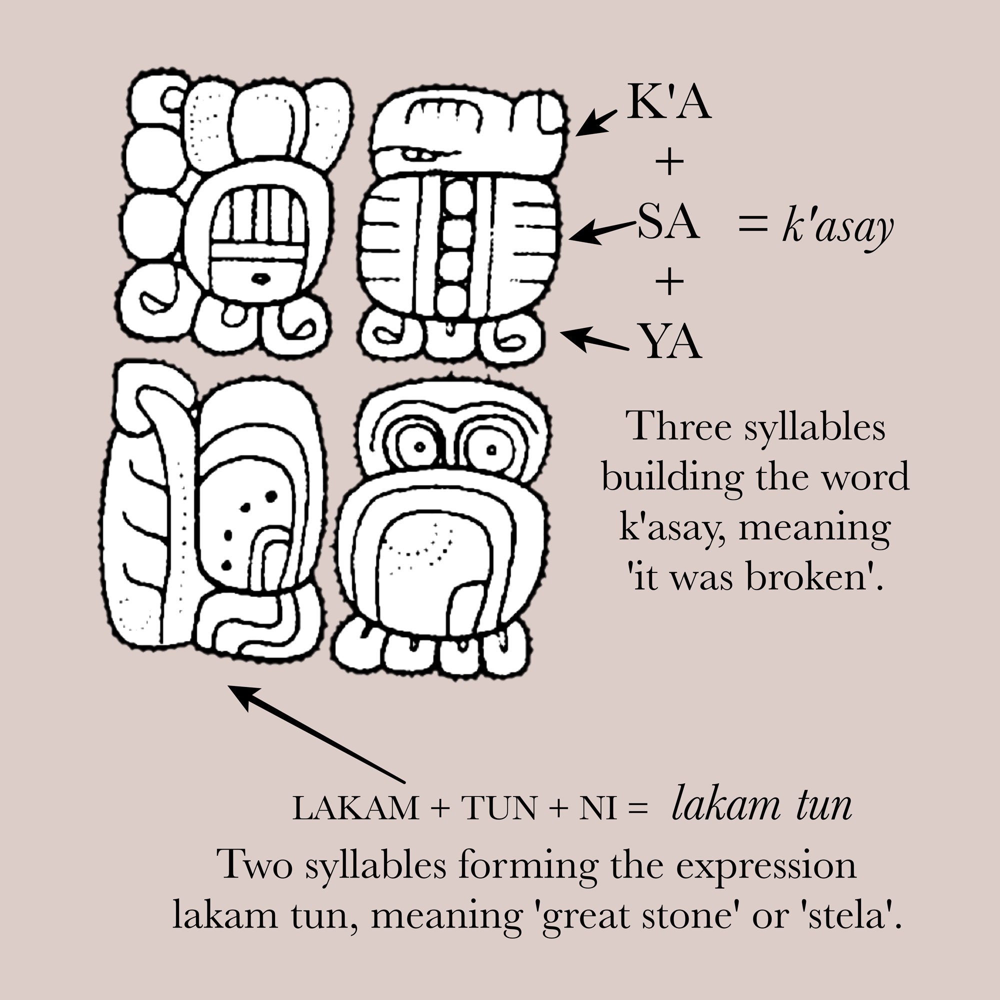 The Maya used symbols (glyphs) to build words and sentences. Some symbols represent complete words, while others represent syllables strung together to make a word.