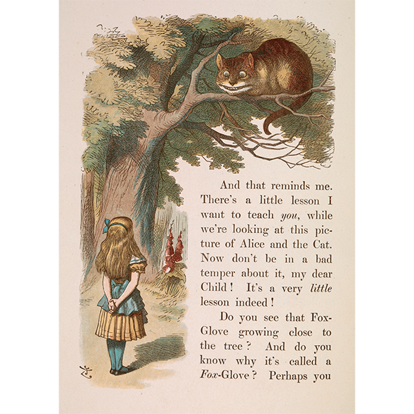 Alice and the Cheshire Cat Unmounted Mini Print