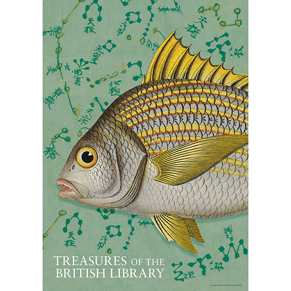 Treasures Fish Poster
