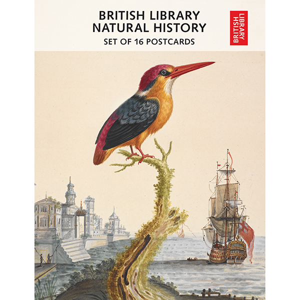 british library 100 birds from around the world 100 postcards in a box