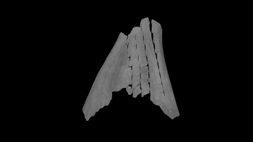 Micro-CT scan image of a Chinese oracle bone