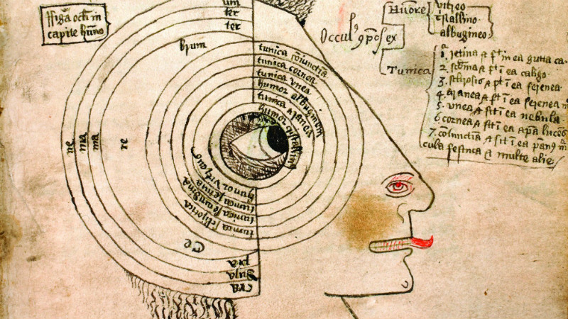 Detail of a  diagram of the eye