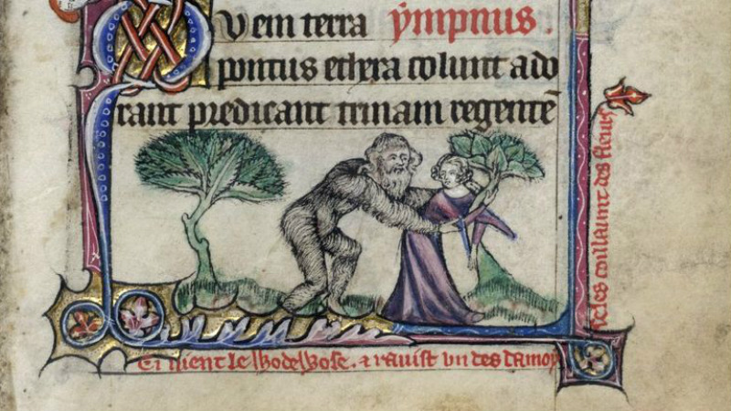 a wildman seizing a lady out collecting flowers