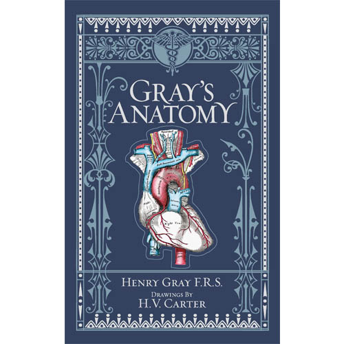 Gray's anatomy book cover
