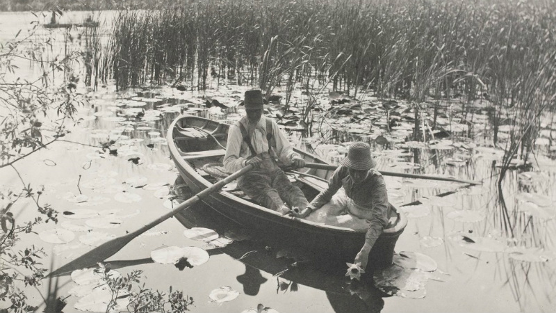 Philip Henry Emerson, Gathering water-lilies, c 1886