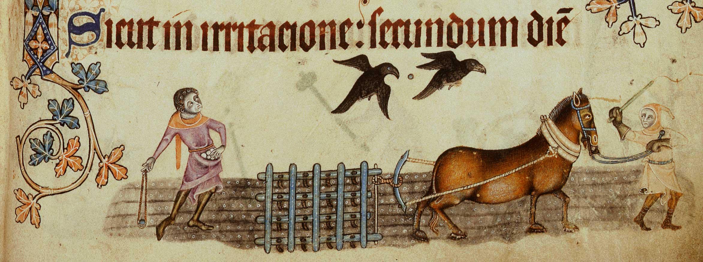 1330-Harrowing-l.jpg