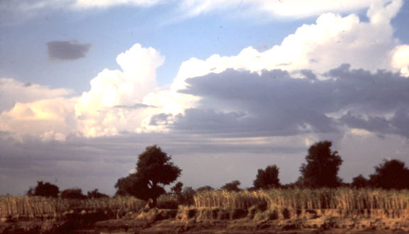 View from hovercraft on Senegal River, 1969