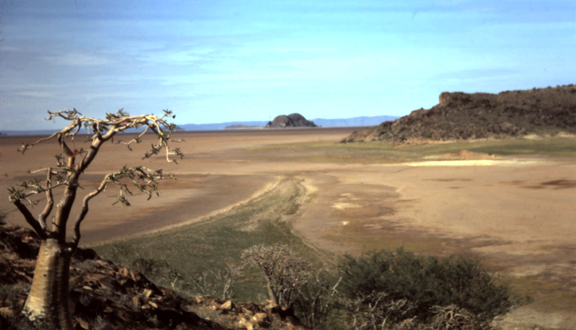 Spit on ancient lake floor seen from former island, Kenya, 1970