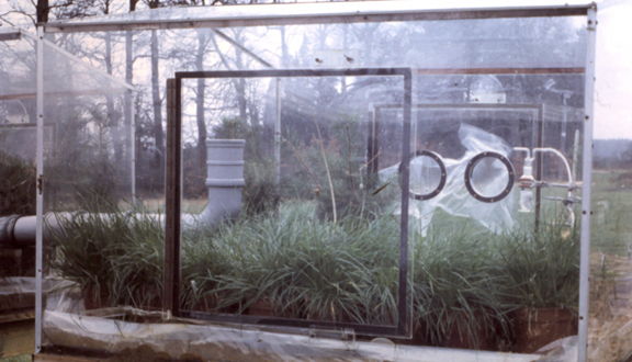 Outdoor fumigation chamber for study of effect on ryegrass of sulphur dioxide, early 1970s