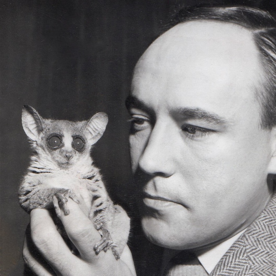 Desmond Morris with a bush baby at London Zoo, May 1956
